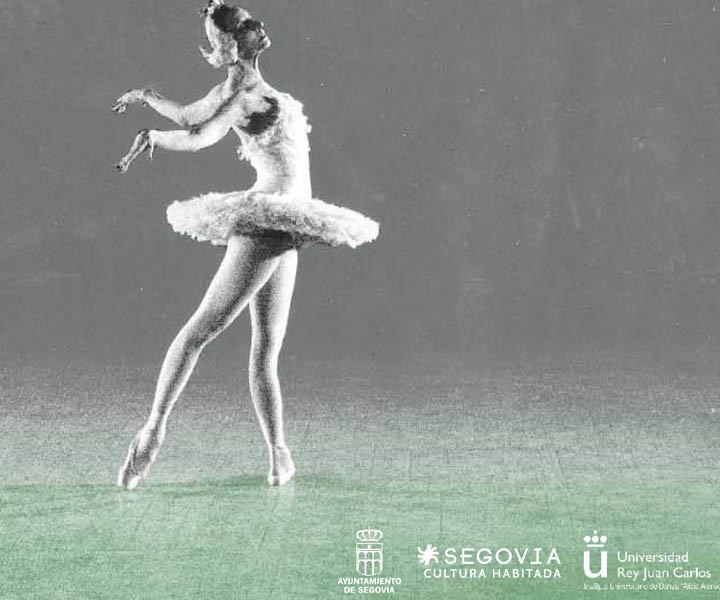 Cartel Segovia en Danza 2014